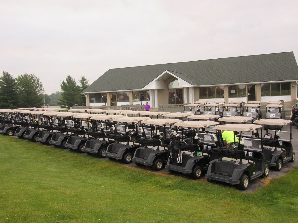 Rows of golf carts